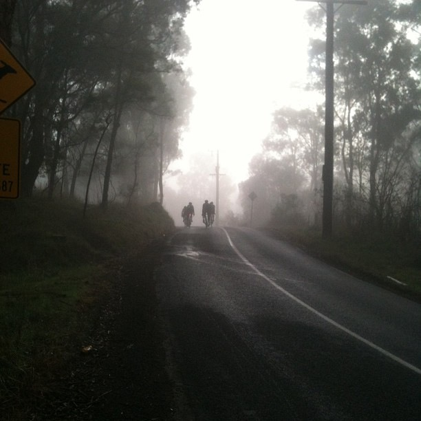 The Fog of Cycling